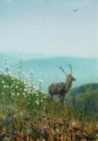 Олень. В горах Алатау. 1869-1870