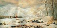 Шипка-Шейново. Скобелев под Шипкой.1878